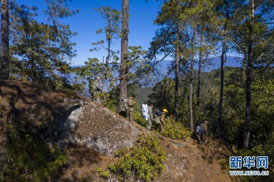 在高黎贡山国家级自然保护区,巡护队员在林间穿行(2020年12月25日摄,无人机照片)。新华社记者江文耀摄