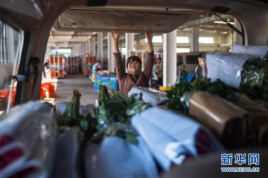 这是2月12日在中国云南昆明斗南花卉市场装车运输的玫瑰花。 新华社记者 江文耀 摄