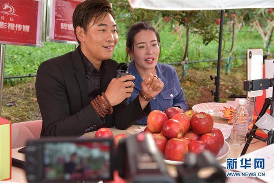工作人员在云南昭通苹果种植基地通过网络直播售卖苹果(8月18日摄)。 新华社记者 林碧锋 摄
