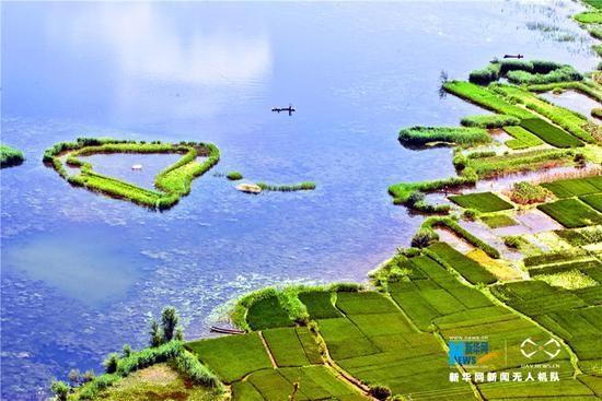 图为大理洱源西湖湿地(资料图)。新华网发 杨士斌 摄