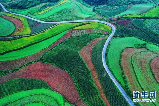 航拍视角下的东川红土地。新华网发(崔永江 摄)