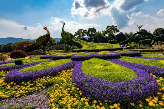 ↑10月2日在昆明市海埂会堂前拍摄的立体花坛。新华社记者 陈欣波 摄