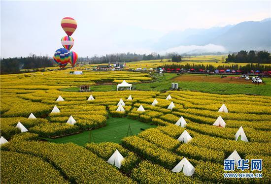 热气球翱翔和星空帐篷相映成趣。新华网发(刘正凡 摄)