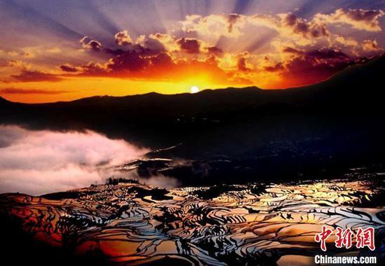 """资料图:云南元阳的七彩梯田被称为""""地球上最美的曲线""""。"""