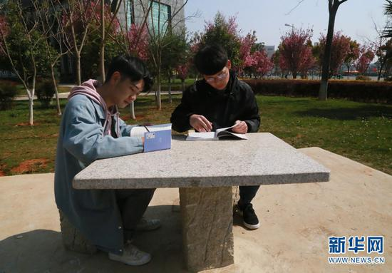 校园内学生们在花下看书学习。柳杨(左)朱俊桦(右)。新华网 马一文 摄
