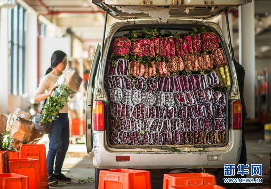 这是2月12日拍摄的在中国云南昆明斗南花卉市场装车运输的玫瑰花。新华社记者 江文耀 摄