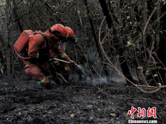 图为灭火人员清理火场内烟点和地下火。云南省森林消防总队供图