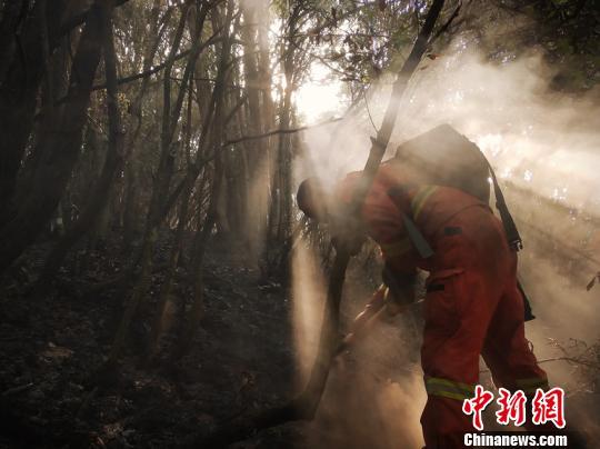 图为森林消防指战员正在清理烟点。云南省森林消防总队供图