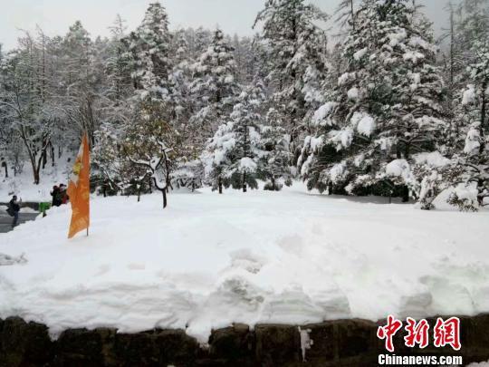 图为7日拍摄的玉龙雪山雪景。 范猜猜 摄