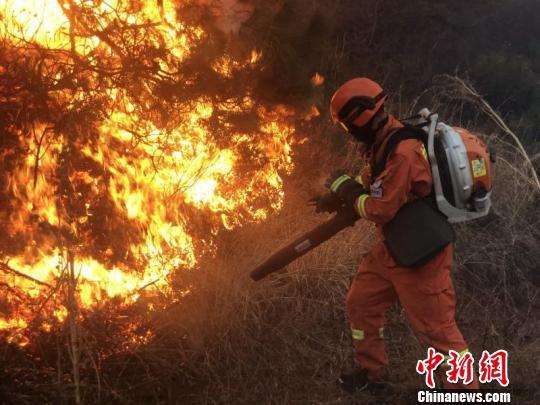 图为森林消防进入火场扑火。 大理州森林消防支队供图