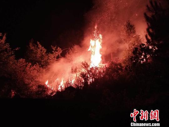 图为发生于大理州永平县的山火。云南省森林消防总队供图