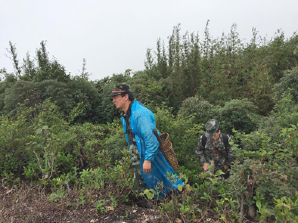 ▲界务员蔡新装(左)和蔡添光攀上尖高山山顶。新华每日电讯记者林碧锋摄