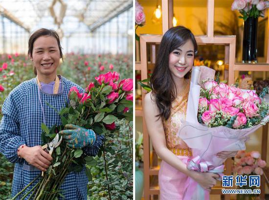 这张拼版照片显示,左图:2月15日,在中国云南石林彝族自治县锦苑花卉产业园,花农抱着鲜花微笑。(新华社记者胡超摄)右图:2月16日,在泰国曼谷,一位女士抱着购买到的鲜花微笑。(新华社记者张可任摄) 新华社发