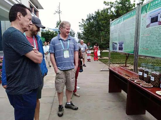 外国嘉宾参观云南澳洲坚果产品。新华社记者许万虎摄