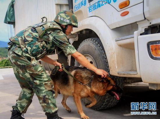 图为孟连边防大队官兵指引缉毒犬对车体进行检查。(供图)
