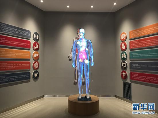 曲靖市禁毒教育基地实体馆内详细展示毒品对人体的危害。(新华网 詹晶晶 摄)