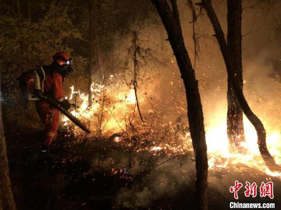 图为森林消防在火场扑火。云南森林消防总队供图