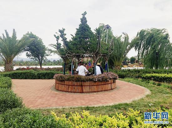楚雄市东华镇小伍排村小组积极打造宜居环境(摄于5月25日)。(新华网 刘馨蔚 摄)