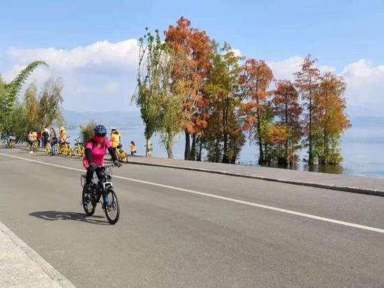 游客在大理洱海边骑行/春城晚报-开屏新闻记者 秦蒙琳 摄