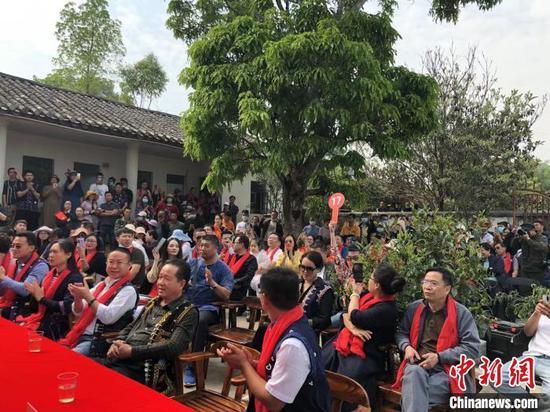 3月28日,云南墨江米地贡茶园茶王树头采鲜叶竞拍吸引众多茶商及普洱茶爱好者参与。 刘丽慧 摄
