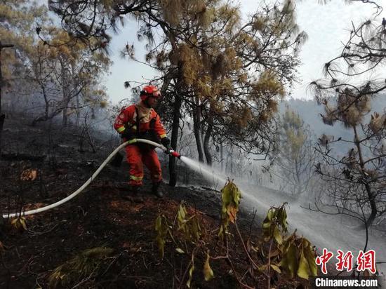 图为火灾救援现场。大理州森林消防支队提供