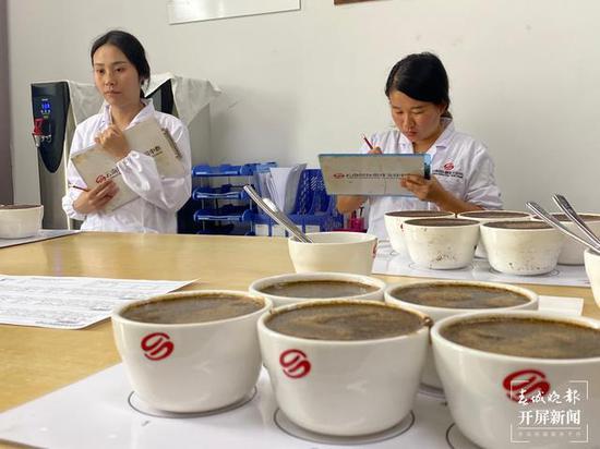 品鉴师对咖啡豆进行杯测