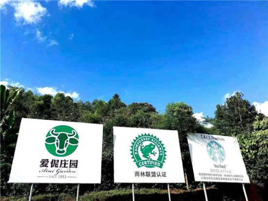 爱伲庄园通过国际雨林联盟认证