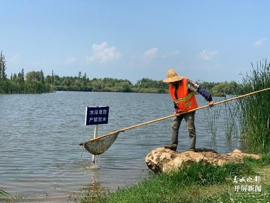 斗南湿地内,工作人员正在打捞漂浮物。