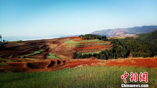 图为近日拍摄的东川红土地景区核心观景点现场。 钟欣 摄