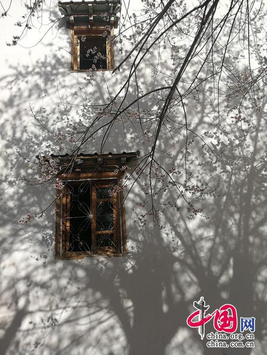 画楼春早,一树桃花笑。——凌廷堪《点绛唇·春眺》摄影 余江