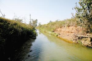 马料河整治前。