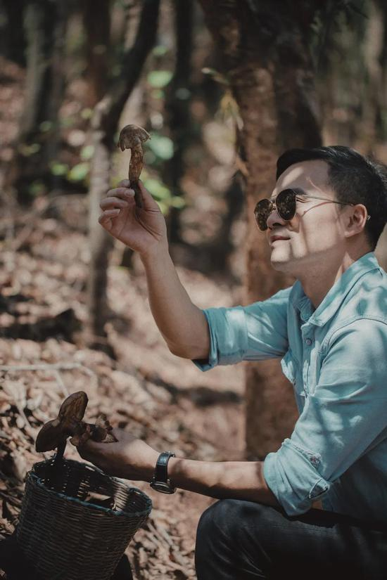 林大厨寻找野生菌