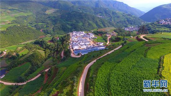 被绿色围绕的福和村搬迁点。新华网 普凡 摄