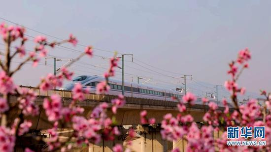 春日乘高鐵穿行云南 邂逅滿目繁花