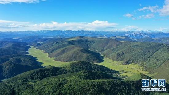 航拍视角下的普达措高山和草甸(2020年8月27日摄)。新华网 赵普凡 摄
