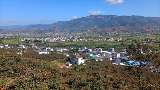 蒲缥镇杨三寨