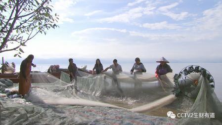澄江:依托高原湖 创出财富路