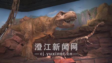 《【星图娱乐登录地址】探秘澄江化石地自然博物馆 与5.18亿年前寒武纪来一场奇幻之旅》