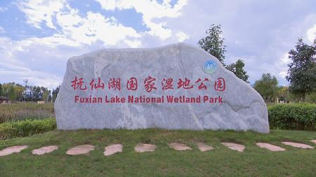 澄江:着力打造抚仙湖国家湿地公园 共享绿意空间