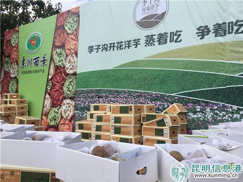 """""""东川特色荟""""农特产品展销"""