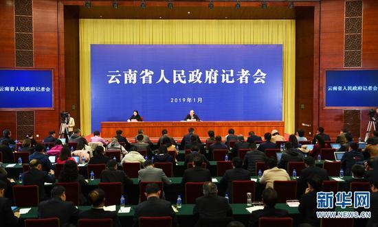1月31日的记者会上,云南省长阮成发现场回答记者提问。新华网发(李明 摄)