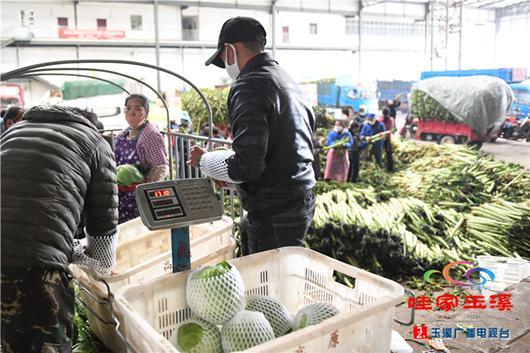 通海县积极组织生产。图片来源于玉溪广播电视台