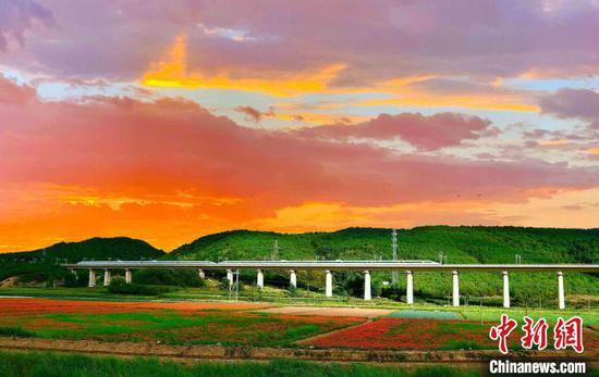 图为一列动车组列车穿行在云南的田园间。 胡芃 摄