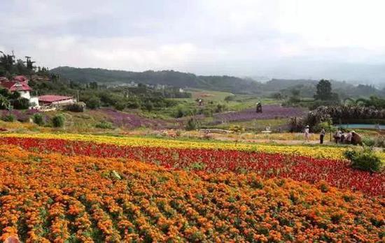 临沧市端午小长假实现旅游收入5907.12万元