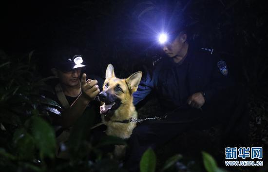 训导员带警犬进行夜训。(新华网 赵普凡 摄)