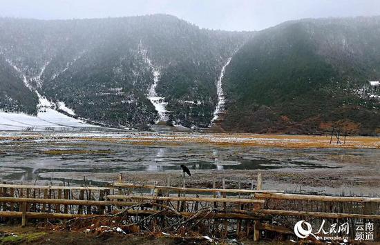 纳帕海雪景。迪庆州旅发委供图