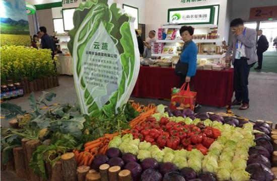 农业馆主打绿色生态食品 展示云南高原特色农业成果