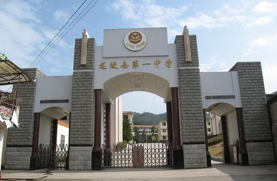 喜报!龙陵一中学子王耀南当选中国工程院信息与电子工程学部