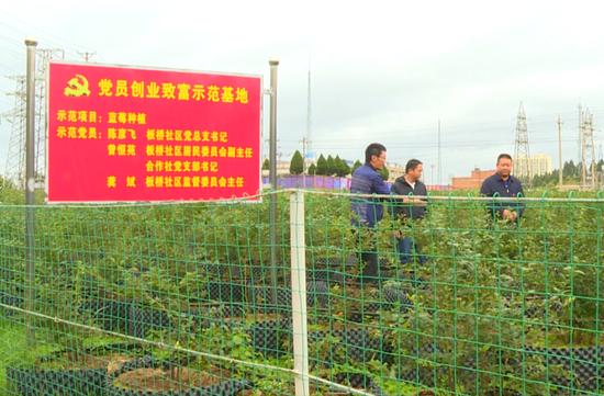 党员创业示范基地