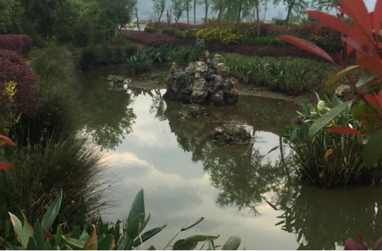 云南腾冲精准施治农村污水让景更美水更清